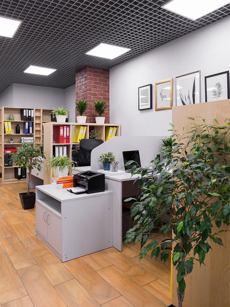 Студия дизайна снимет офис